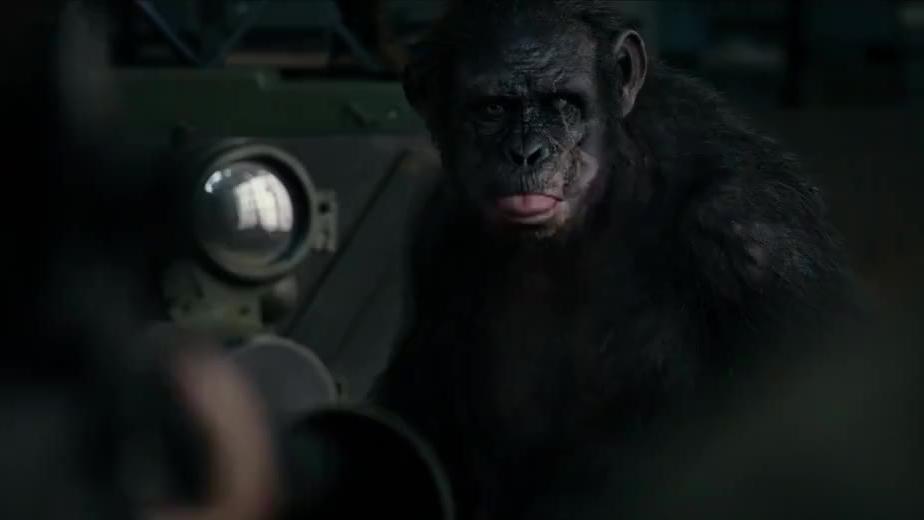 猿类闯入了人类的秘密武器,装疯卖傻才能出来,这猩猩太聪明了
