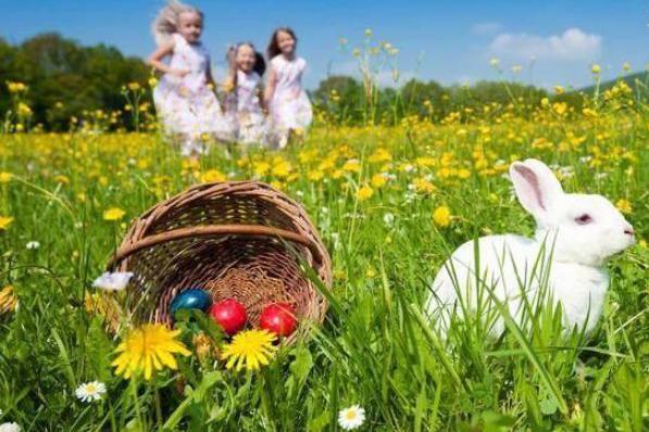 生肖兔要珍惜这两个人,只有他们与你有难同当,真正同甘共苦之人