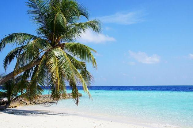 世界上有十片最美海滩,浪漫与幸福的合集,最后一个会是你的钟爱