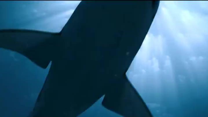 莫妮卡为了躲避他们的追赶,一路狂奔却意外掉进了水里