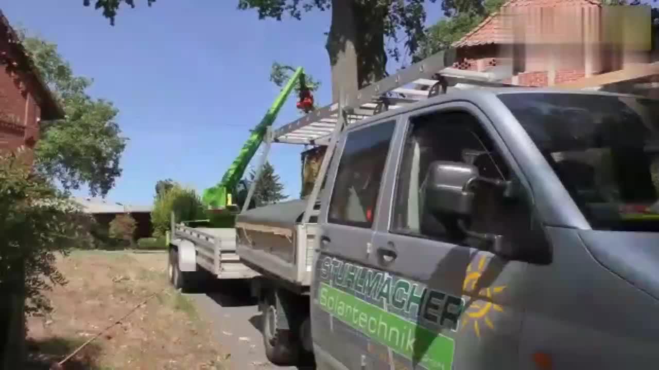 实拍德国工人砍伐树木恕我直言这机械化真是好先进