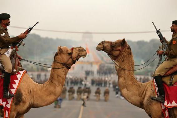 711亿美元军费还不够?印度军队想靠经商挣钱,美媒的话太扎心了