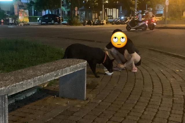 途中遇狗翻垃圾桶,以为是流浪狗便随口喊爱犬的名字,结局超尴尬