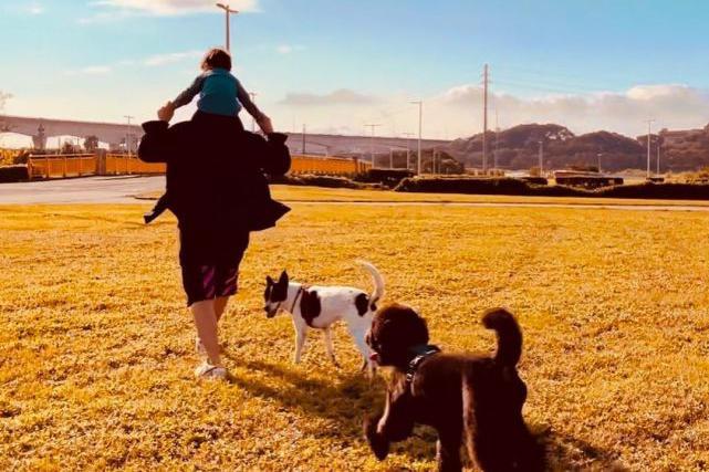 昆凌忙工作周杰伦当妈带子女出外游玩 让子女骑脖子的画面很温馨