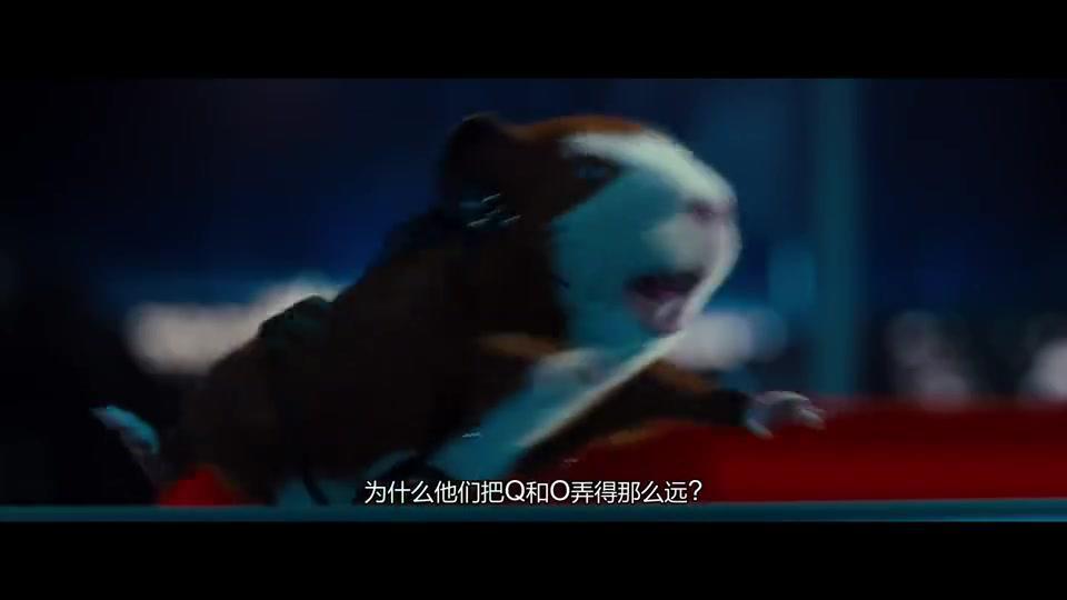 豚鼠特工队:好兄弟危难之中,豚鼠趁机翘他妹子,能不能严肃点