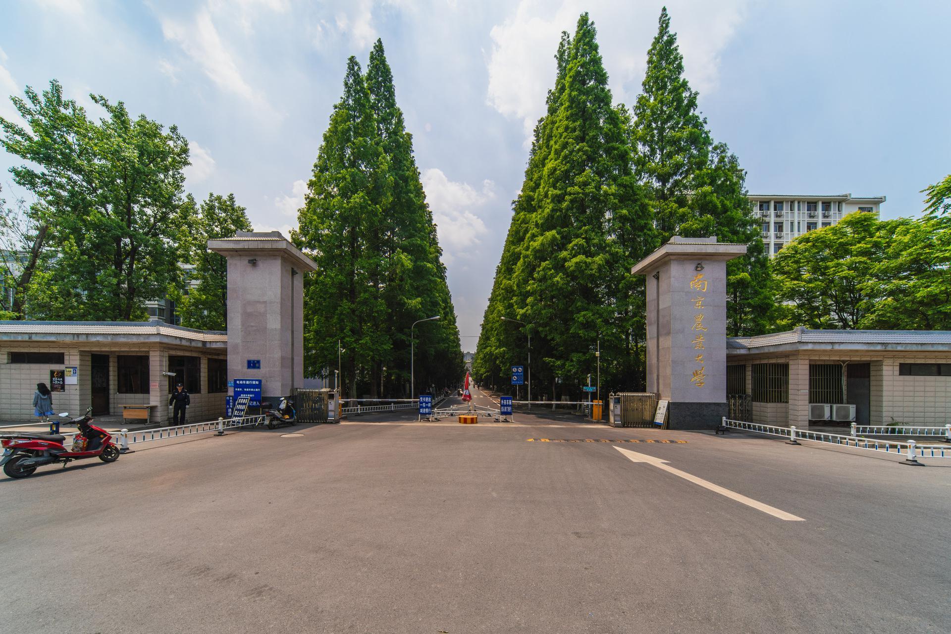 南京这所高校有4个A+专业,超过多所985位列11名,实力大于名气