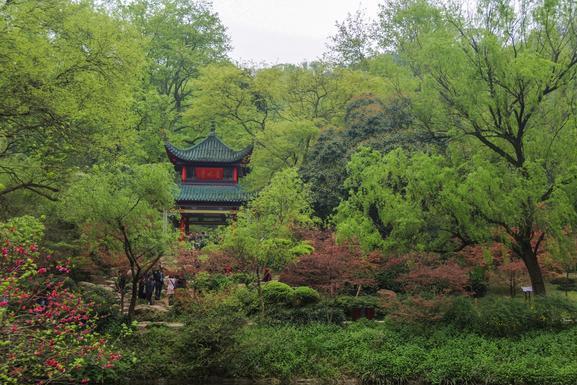 长沙这座山与北京香山齐名,位列四大赏枫胜地,还是5A景区