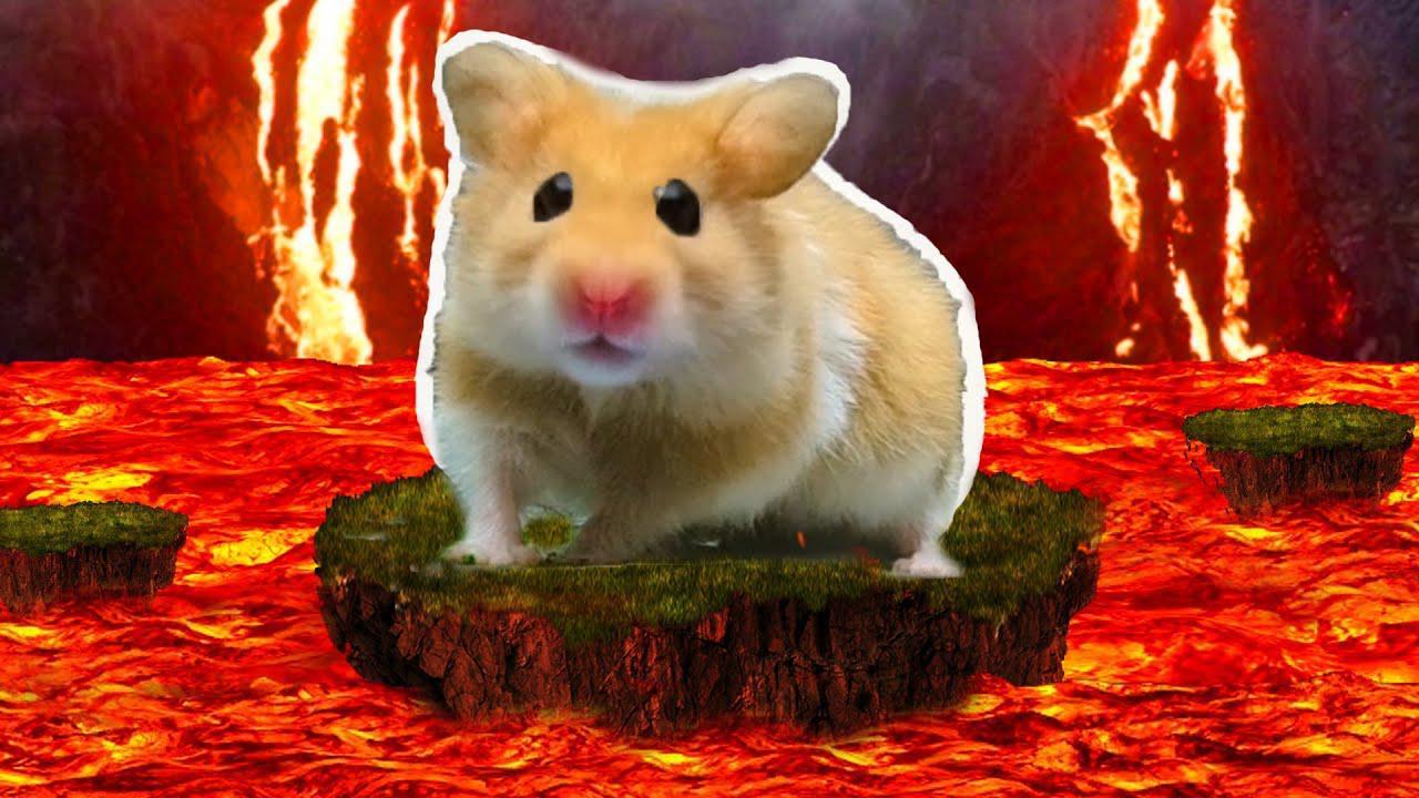 小仓鼠一觉醒来身处险境,一路勇闯熔岩迷宫,全程太高能了吧