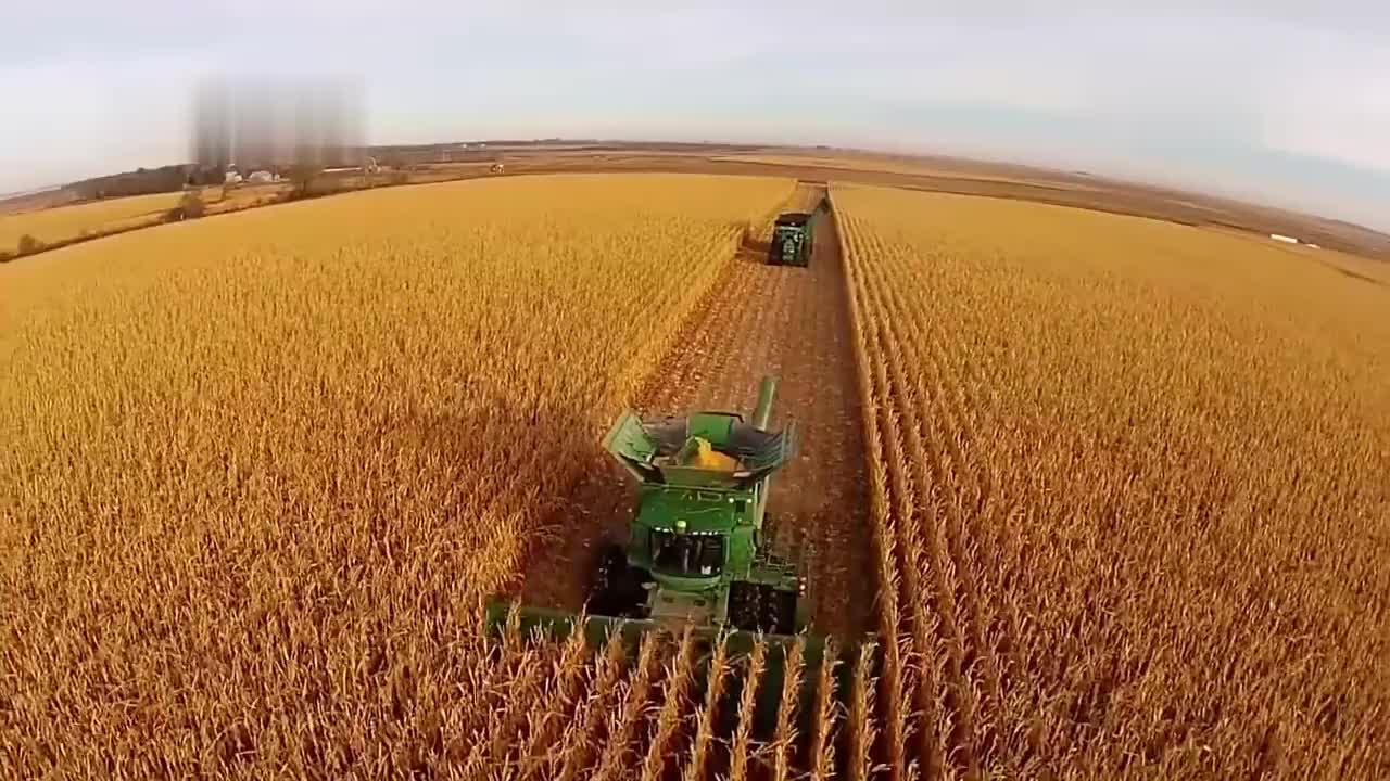 玉米收割机,性能强大又方便!