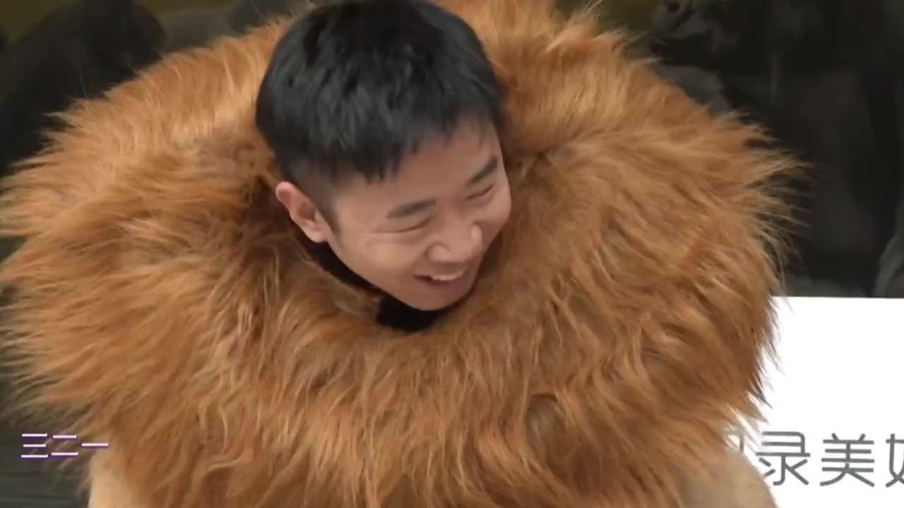 当他们扮成动物,薛之谦王耀庆大猩猩神似,杨超越奶凶狮子超可爱