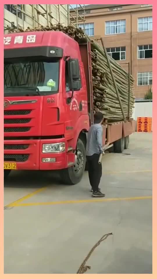 司机小师傅表演绝活卸货,省时省力省人工,果然高手在人间!