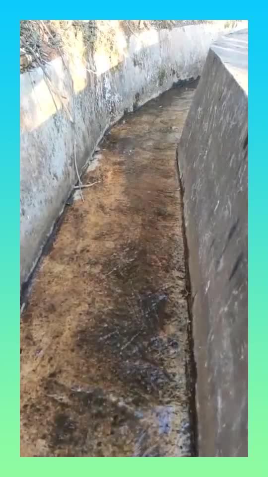 如今早已荒废的水渠,被小伙加入新概念月入百万,全村都嫉妒了!