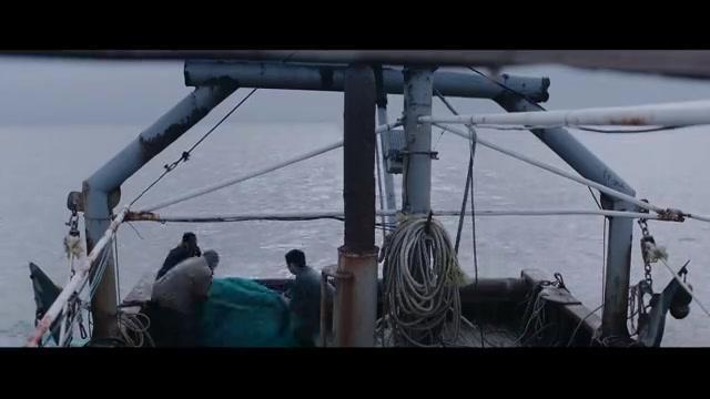 渔船归港船员全部失踪,背后真相让人大跌眼镜