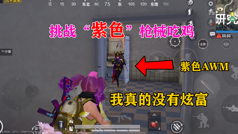 """小梦:挑战""""紫色""""枪械,这些皮肤你都见过吗?我真的没有炫富"""