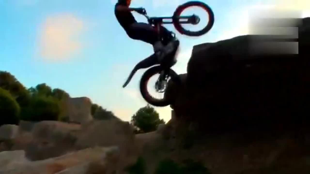 极限运动爱好者男子挑战极限摩托车上树,让人看呆了