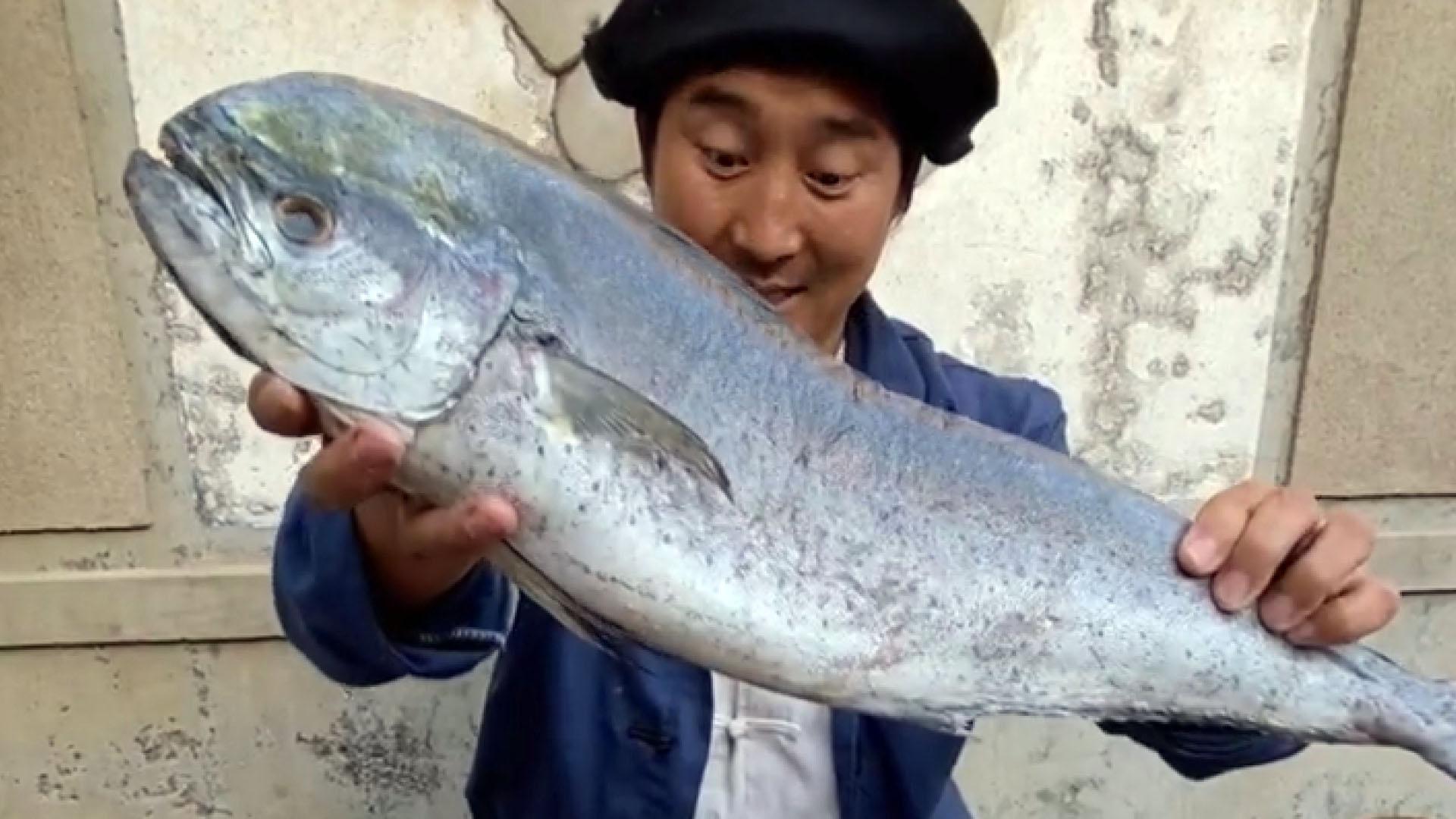 青岛小哥捡海鲜做美食网红,网友却在他身上看到陈佩斯的身影