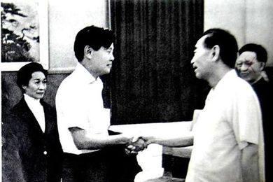 杨振宁回国后想见毛主席,华总理得知后没同意,他一番话让人落泪