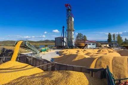 中国的粮食可以养活中国人吗?