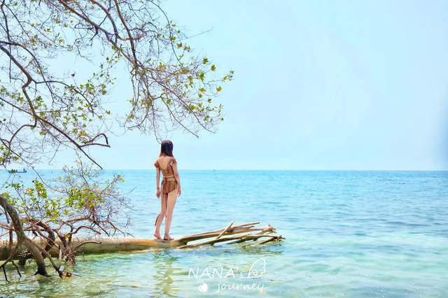 深入加勒比海,感受海岛的野生魅力,是祖母绿色的大海了