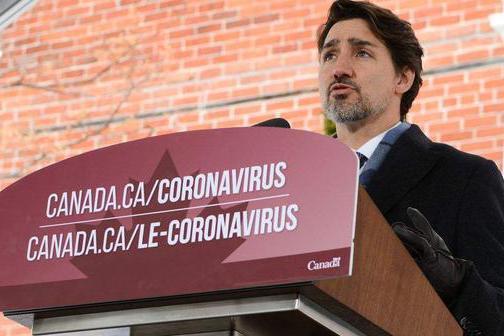 又想让我们帮助!为了挽救经济,加拿大希望恢复向中国出口油菜籽