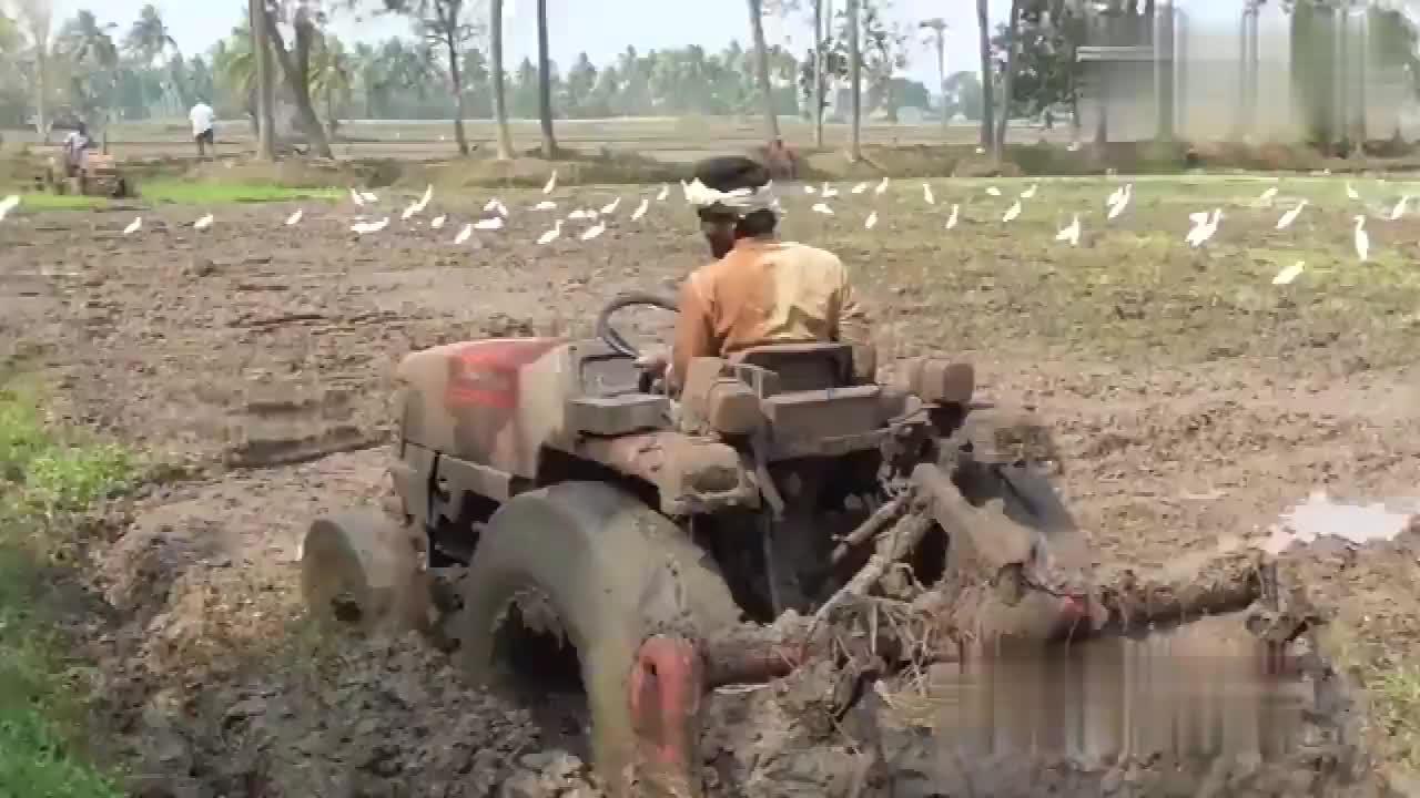 看完印度人开拖拉机才明白开挂民族果然名不虚传