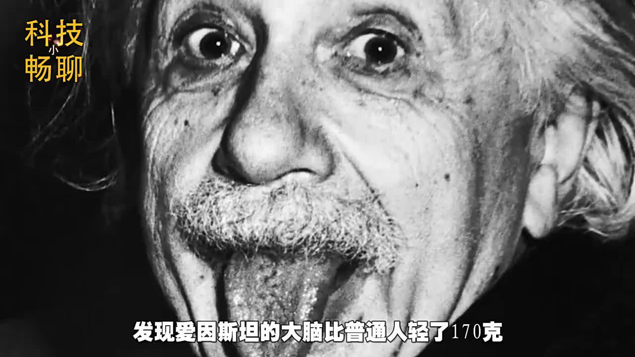 智商200的爱因斯坦去世后,大脑分成240块,发现与常人不同