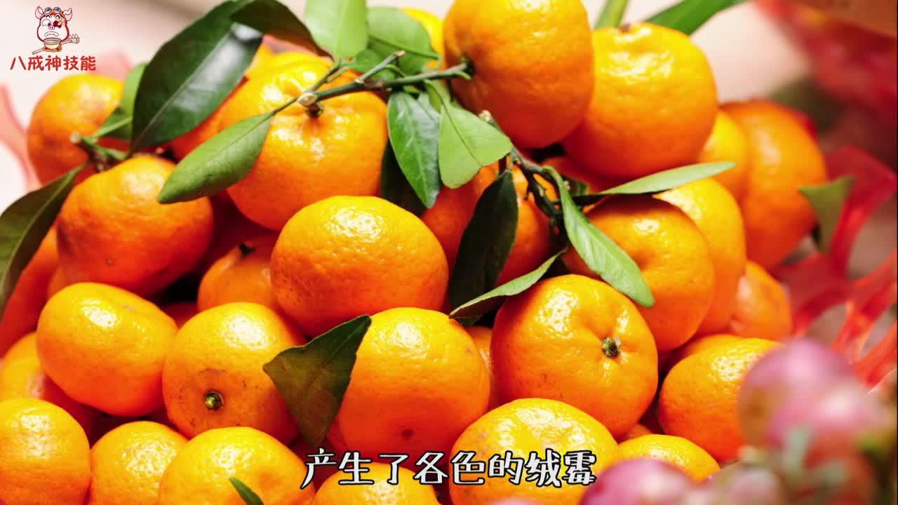"""为什么砂糖橘是带叶子卖的?背后大有""""猫腻"""",多亏了果农的提醒"""