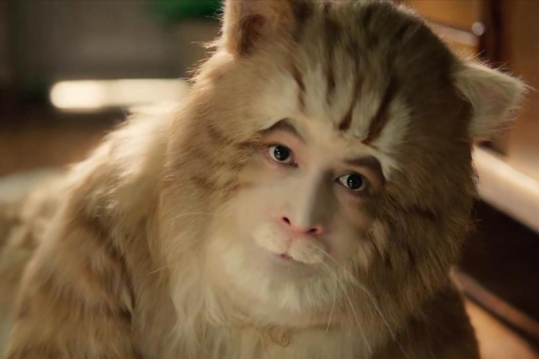 39岁胡歌演16岁老猫,全身沾满黄毛往地上蹭,男神卖萌太拼了
