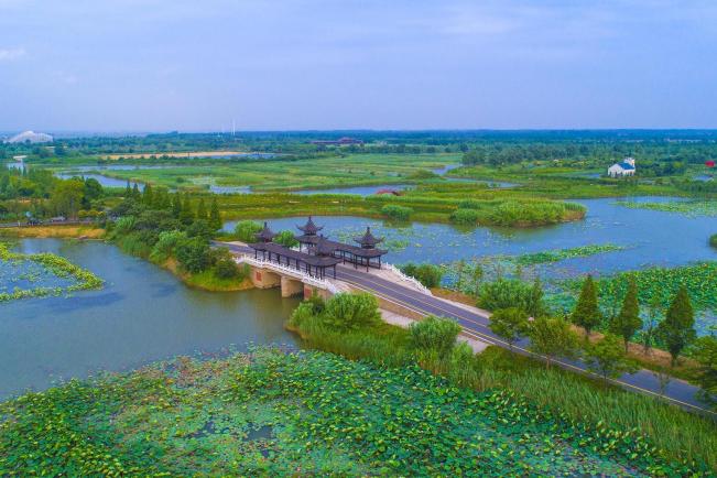 泗洪旅游:到洪泽湖去 游大湿地、做深吸!