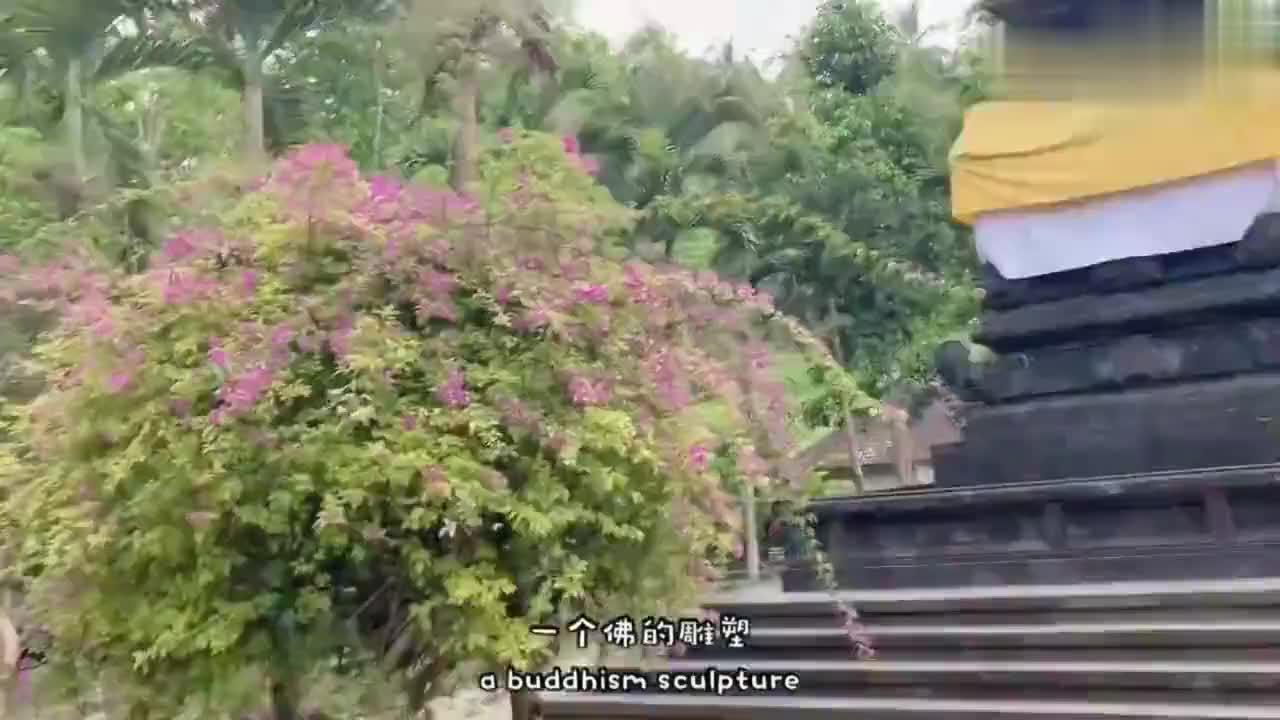 巴厘岛最精彩的寺庙,圣泉寺。泉水干净凉快,有缘一定来。