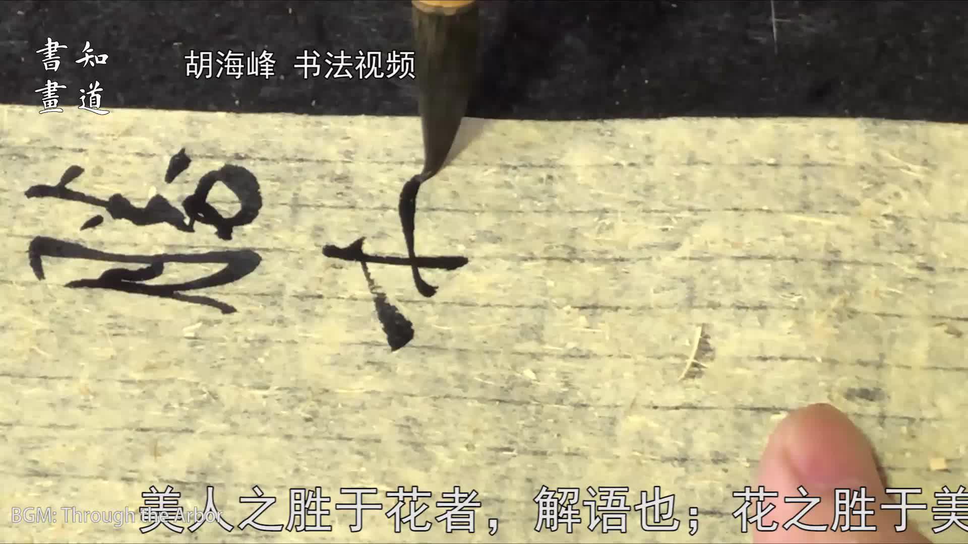 知道书画|海峰书法视频 行草书《幽梦影》数则 08