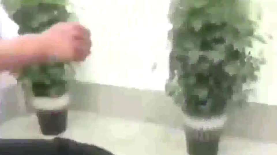 广东散打高手挑战民间河南太极大师,打出火气瞬间急眼了