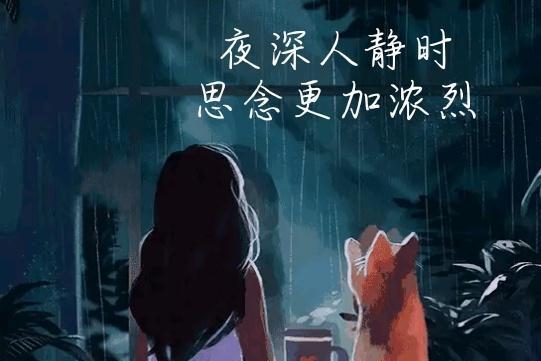 爱你在远方,思念我在流泪;想你,静夜思念更浓,心更痛