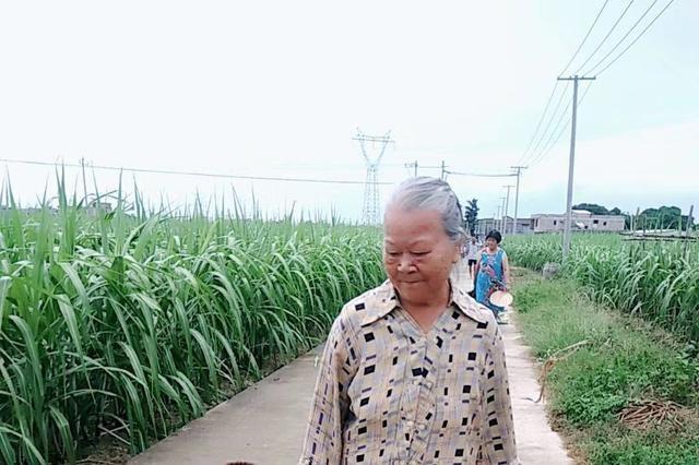 在广西博白县有一个叫三潭的地方,风景美