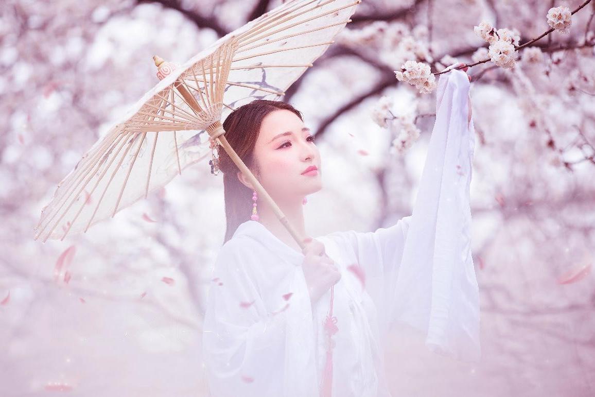 罗学成:邂逅新野桃花节