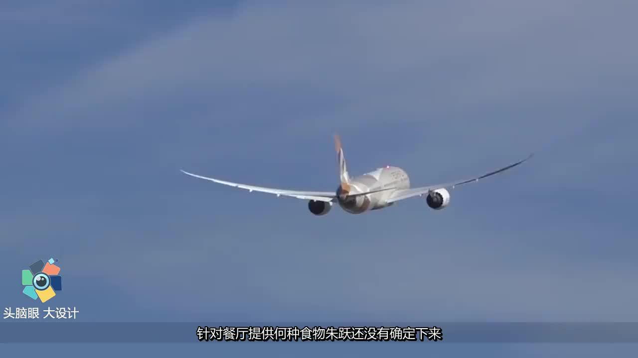 """中国辽宁农民,花费270万,打造""""空客A320""""1比1比例,完美复制"""