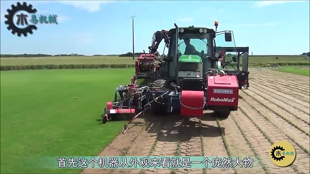 看看什么叫全自动化!外国农场草坪收割打包,一小时收割3亩地