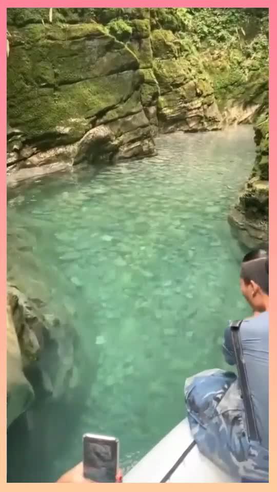 山间的小溪真美,水太清澈了,真是让人向往的地方