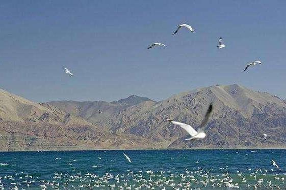 班公湖,西部边陲的美丽湖泊,一片壮美的大好山水