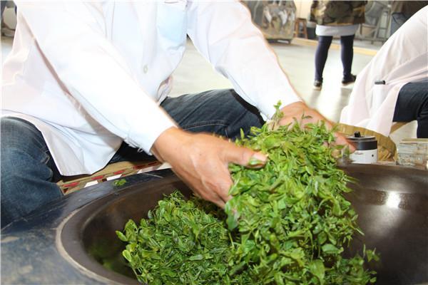 山海茶飘香!青岛市茶文化节暨第17届崂山茶文化节开幕