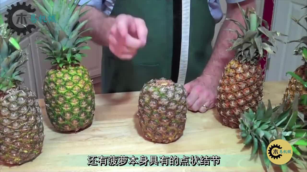 民间高手发明去菠萝皮神器,被邀上央视频道!