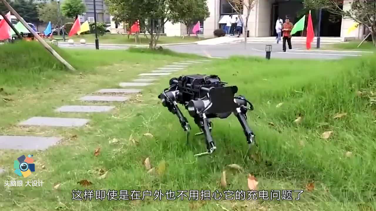 中国90后大学生,造国产机械狗惊艳世界,美国重金收购被拒!