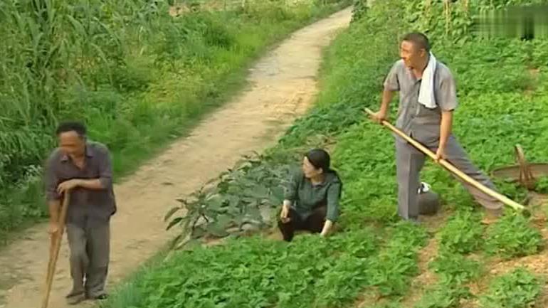 农村老汉叫俩儿子回家种地,一个厂长一个局长,一下车父亲看愣了