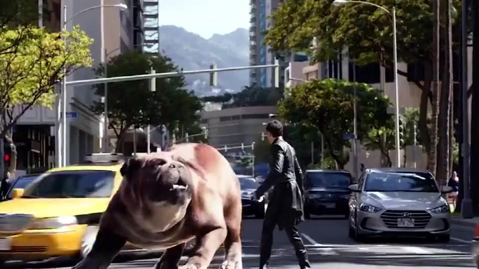 月球狗子是怪物级别的吗?比汽车还大
