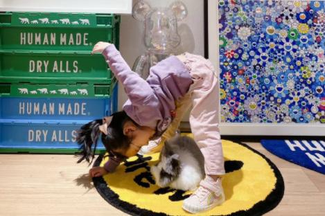 陈赫晒女儿玩耍照,安安弯腰趴地与宠物兔对视,网友:两个小可爱