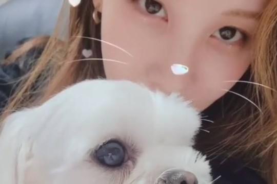 少女时代成员徐贤SNS发布与家中宠物犬合影