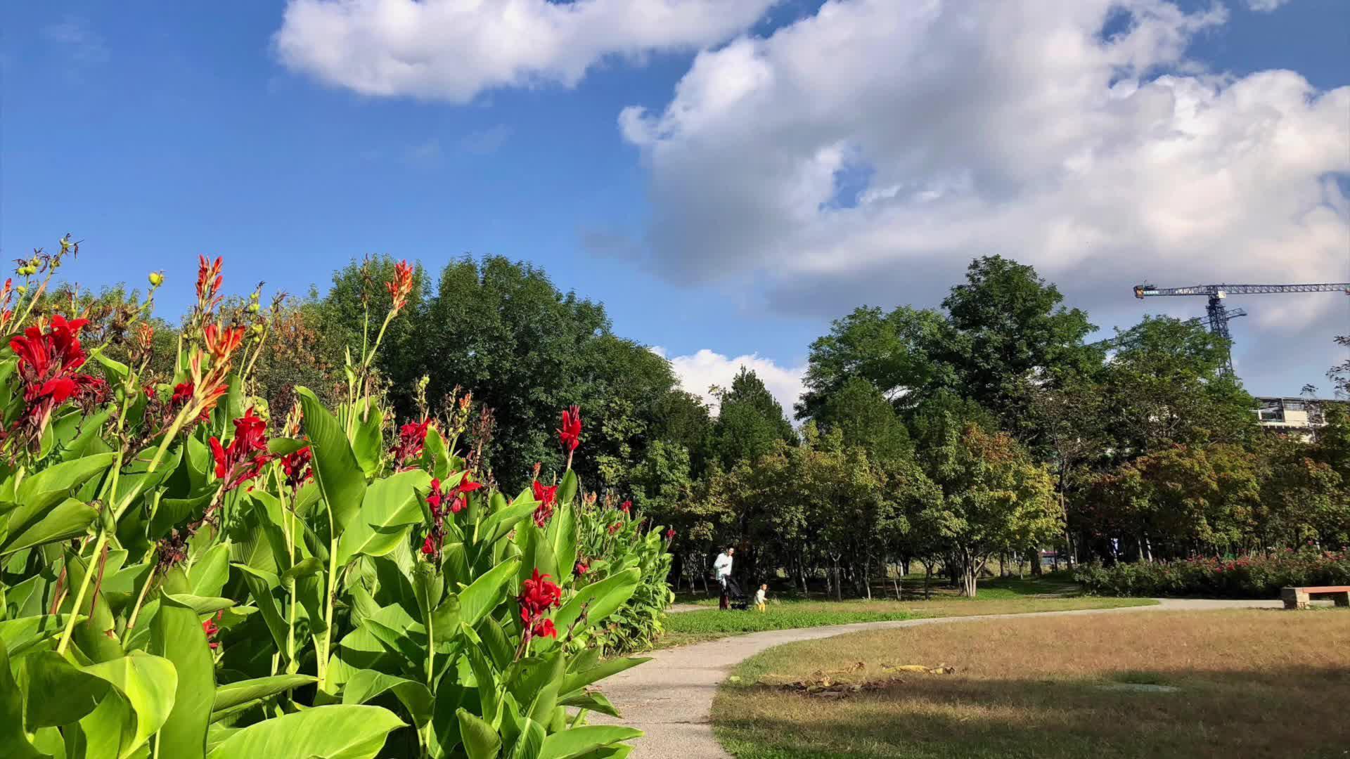 周游北京:奥林匹克公园,蓝天白云、夏花秋色