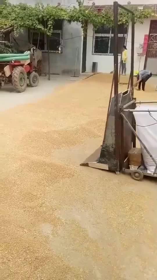农村小伙真有智慧,自制工具装晾晒的麦子,方便实用还省劲