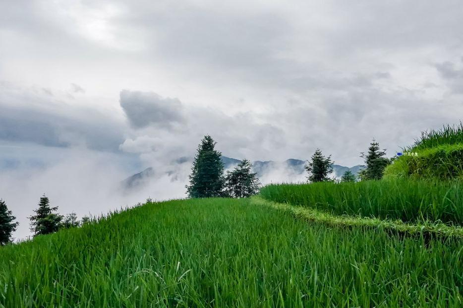 隐匿在湖南雪峰山深处的的绝美梯田,让你清凉整个夏天!