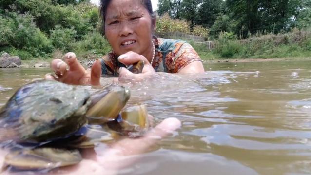 10年未干的鱼塘,水下野货多多,不到2小时,捡了足足90斤,过瘾
